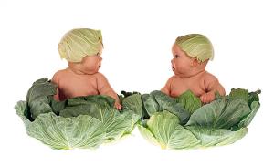 bambini vegetariani salute 2